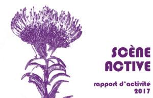 Scène Active : Le rapport 2017